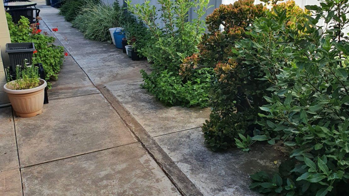 Side-garden