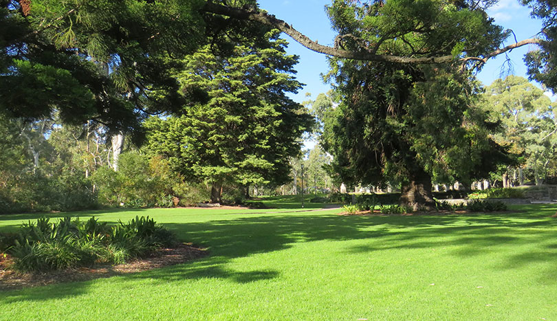 Units For Rent Magill | Hazelwood Park