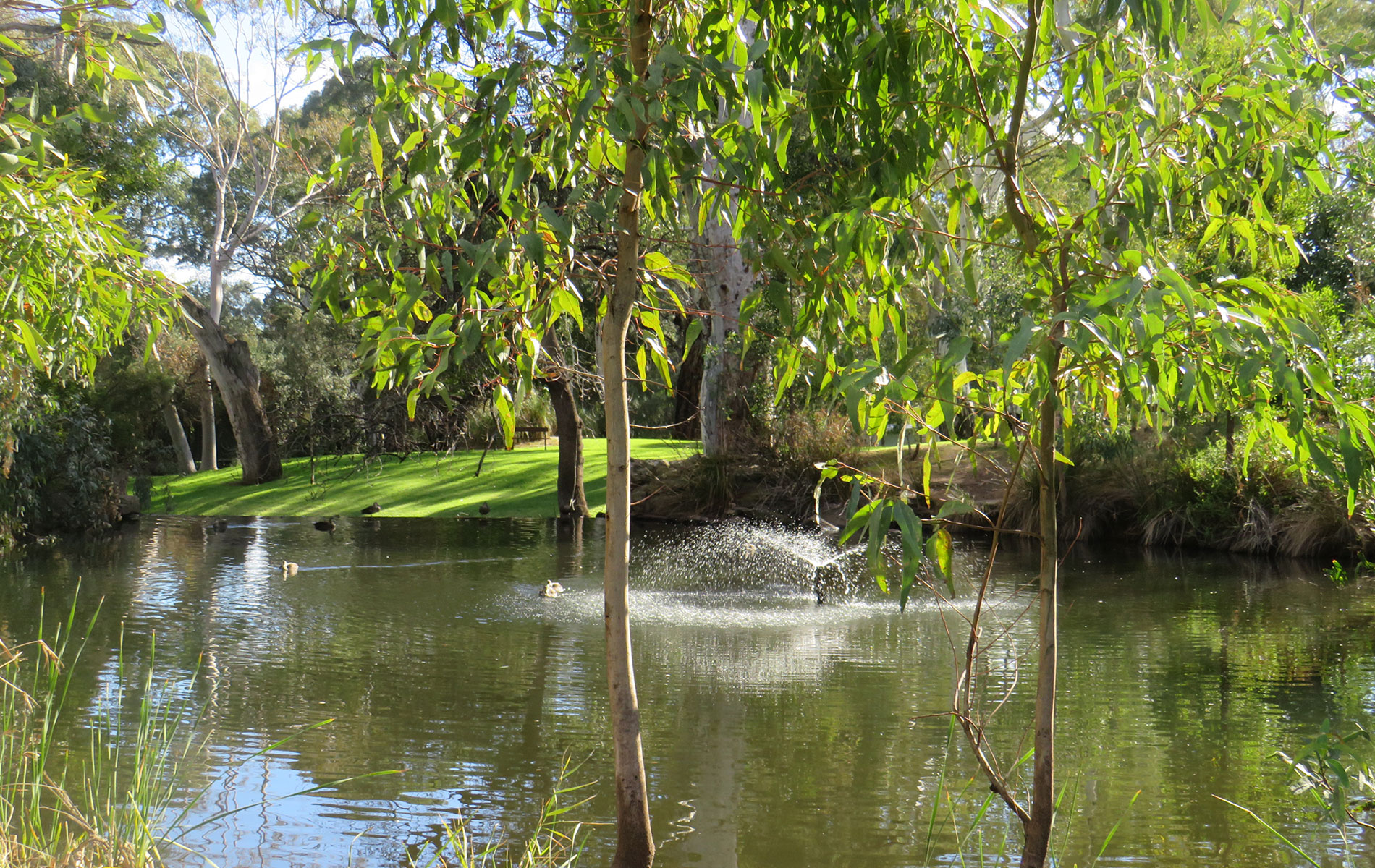 Rental Properties | Hazelwood Park