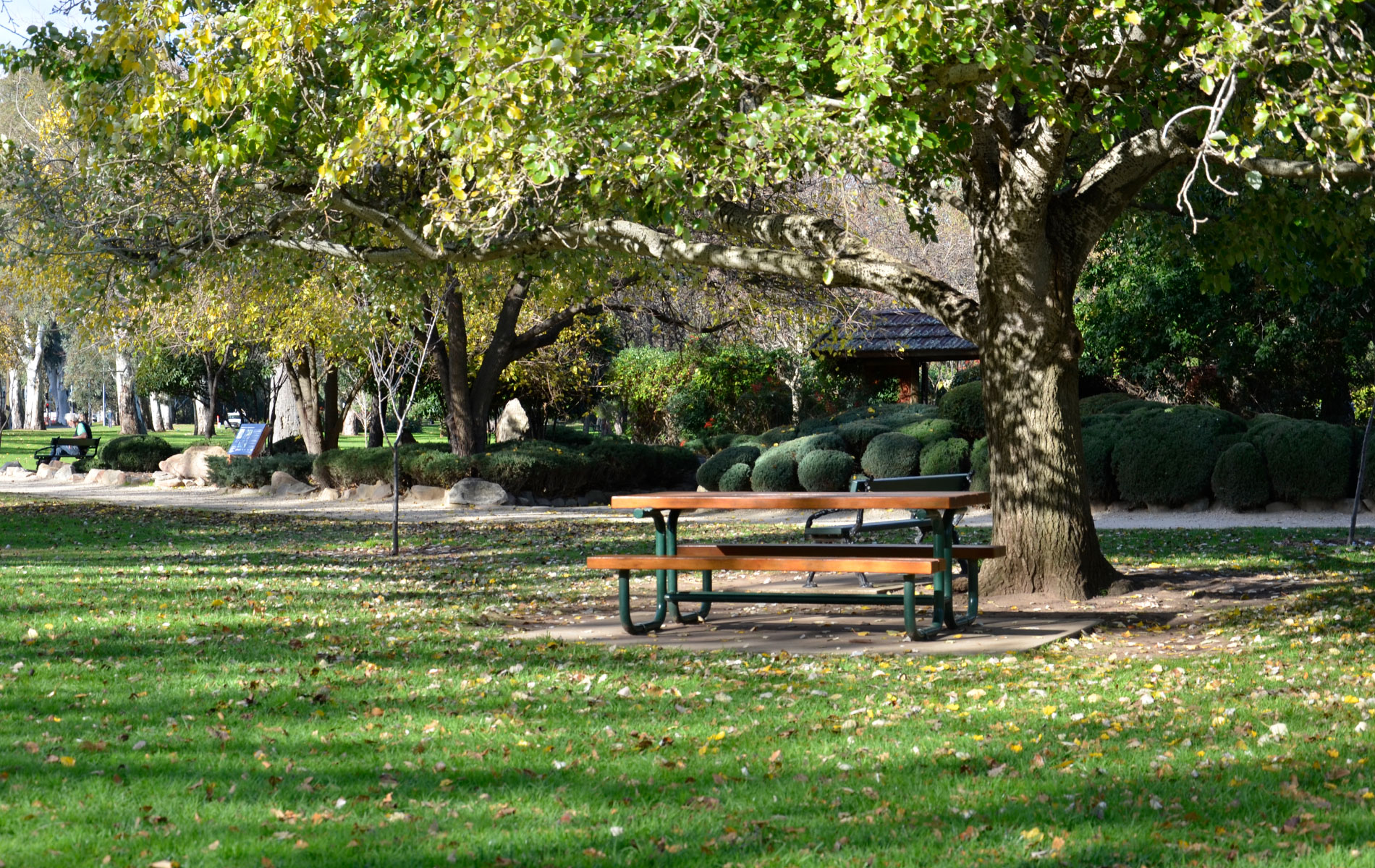 South Terrace Parklands | Japanese Himeji Gardens